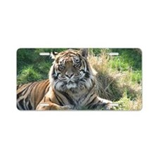 TigerWA Shoulder Aluminum License Plate