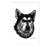 Alaskan Malamute Postcards (Package of 8)