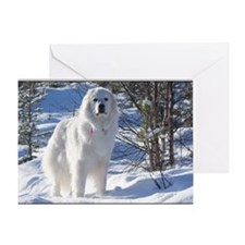 cub_12_11 Greeting Card