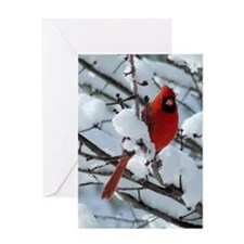 CAW9x12SF Greeting Card