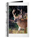 Deer in Grass Journal