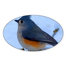 Snow Bird Decal