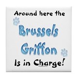 Brussels Charge Tile Coaster