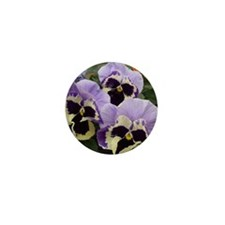 Multi colored Pansies Mini Button