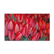 Tulips Rectangle Car Magnet