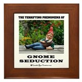 Gnome Seduction Framed Tile