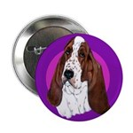 Adorable Basset Hound 2.25