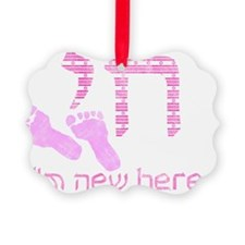 new_here_chai_pink Picture Ornament