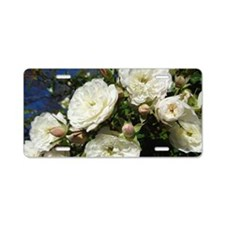 White Roses in Blue Sky Aluminum License Plate