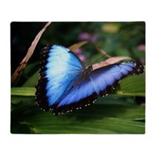 Blue Morpho Butterfly 2 Throw Blanket