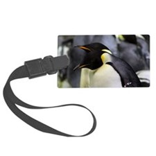 Emperor Penguins 4 Luggage Tag