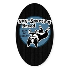 bostonnonsportipad Decal