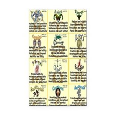 zodiac-journal Rectangle Car Magnet