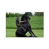 &quot;Friesian 8&quot; Rectangle Magnet