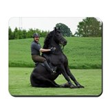"""Friesian 8"" Mousepad"