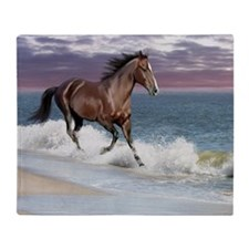 Dreamer_on_beach Throw Blanket