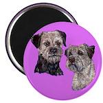 Border Terriers Magnet