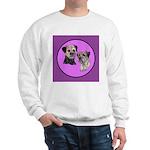 Border Terriers Sweatshirt