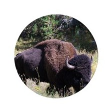 "Solitary Buffalo 3.5"" Button"