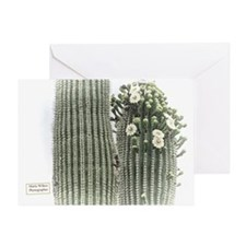 saguaro flowers Greeting Card
