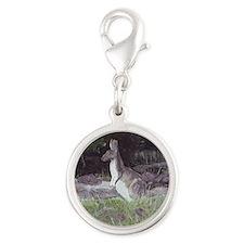 kangaroo coaster keepsake box Silver Round Charm
