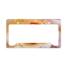 AFP 21b Creamy orange rose License Plate Holder