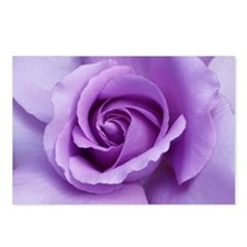 FP 18 Rose Lavendar  Postcards (Package of 8)