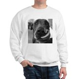 Great Dane Jumper