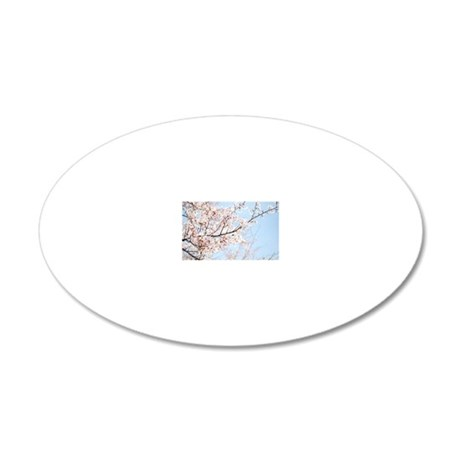 Spring 20x12 Oval Wall Decal