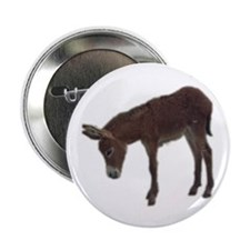 "young donkey 2.25"" Button (10 pack)"