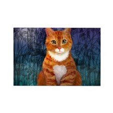 Orange Tabby Cat Rectangle Magnet