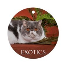 Calendar Cover Round Ornament