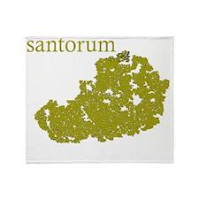 santorum Throw Blanket