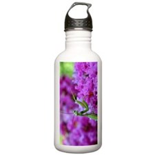 Greeting Card Pink Pre Water Bottle