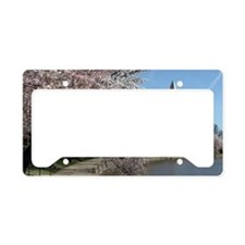 Peal bloom cherry blossom fra License Plate Holder