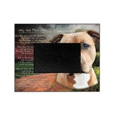 godmadedogs(laptop) Picture Frame