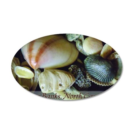 shells01 35x21 Oval Wall Decal