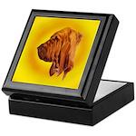 Beautiful Bloodhound Head stu Keepsake Box