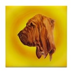 Beautiful Bloodhound Head stu Tile Coaster