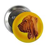 Beautiful Bloodhound Head stu Button