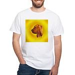 Beautiful Bloodhound Head stu White T-Shirt