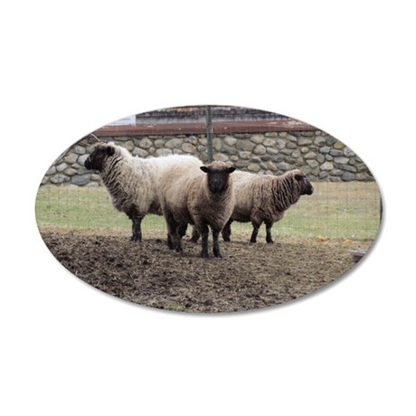 3 Sheep at odds 35x21 Oval Wall Decal