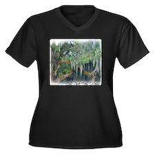 city park ne Women's Plus Size Dark V-Neck T-Shirt