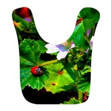 Lady Bug I Bib