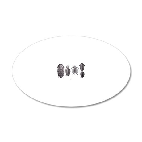 Trilobites 20x12 Oval Wall Decal