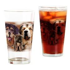 tib mastiff3 Drinking Glass