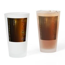 ipad_0096_San diego1 Ted Ross GNU-2 Drinking Glass