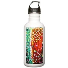 Butterfly Effect Sports Water Bottle