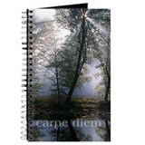 carpe diem/light thru trees journal