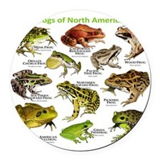 Frogs of North America Round Car Magnet